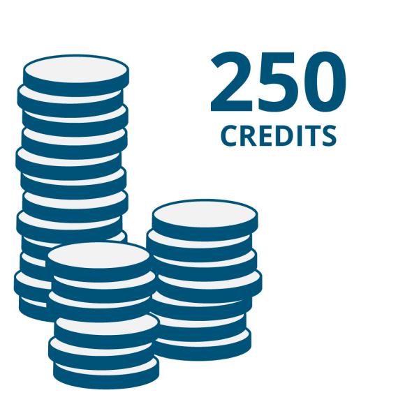 """Guthaben für Onlinecode-Funktion der """"E Code"""" Produkte: 250 Credits"""